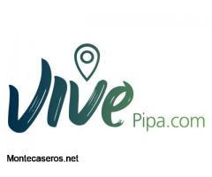 VivePipa - Playa de Pipa Brasil - Turismo Digital